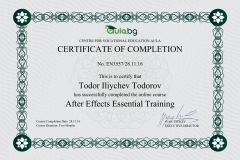 After Effects - Certificate by Aula.bg