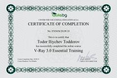 V-Ray - Certificate by Aula.bg